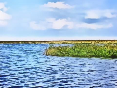 Lake Milton #1