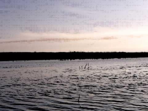 Horsey's Pond
